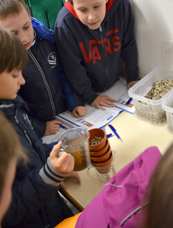 Die Schüler führen ein Experiment zur Wasserreinigung durch.