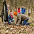 Baumpflanz-Aktion