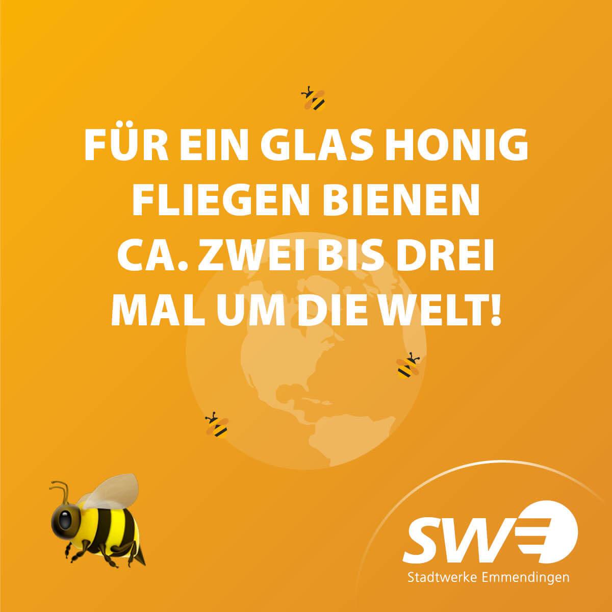 SummSumm-Woche_Beiträge7